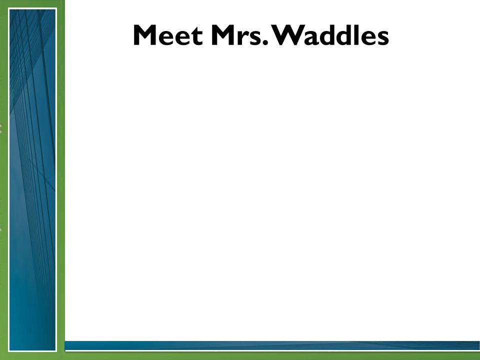 Meet Mrs. Waddles