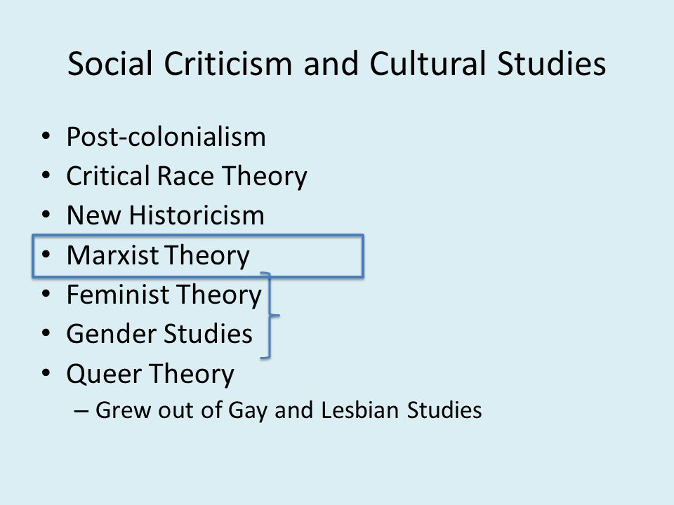 Social Criticism and Cultural Studies Post-colonialism Critical Race Theory New Historicism Marxist Theory Feminist Theory Gender Studies Queer Theory – Grew out of Gay and Lesbian Studies