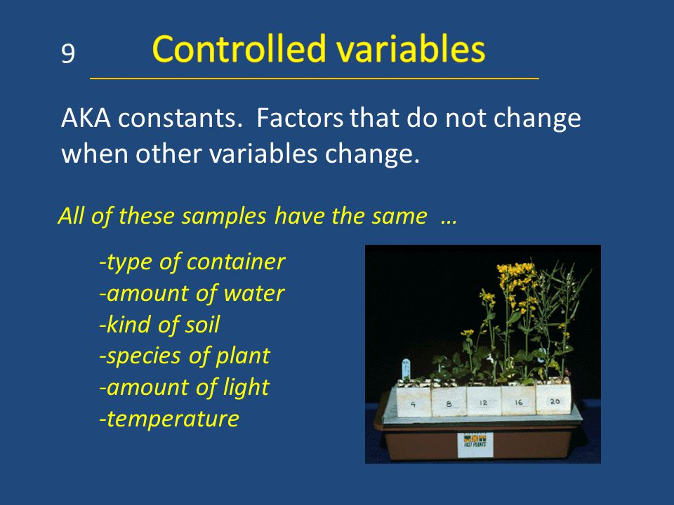 AKA constants. Factors that do not change when other variables change. 9 -type of container -amount of water -kind of soil -species of plant -amount o