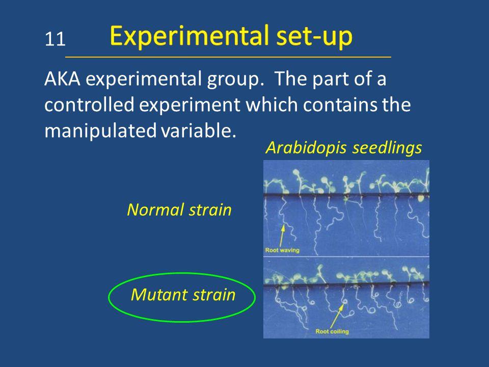 AKA experimental group.