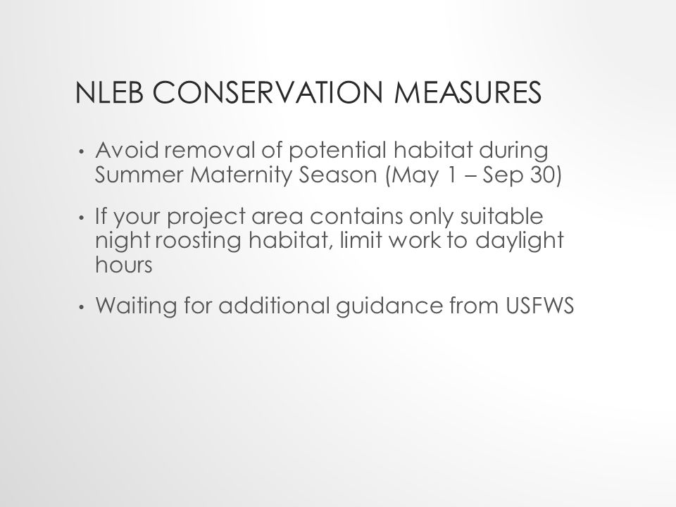 NLEB CONSERVATION MEASURES Avoid removal of potential habitat during Summer Maternity Season (May 1 – Sep 30) If your project area contains only suitable night roosting habitat, limit work to daylight hours Waiting for additional guidance from USFWS