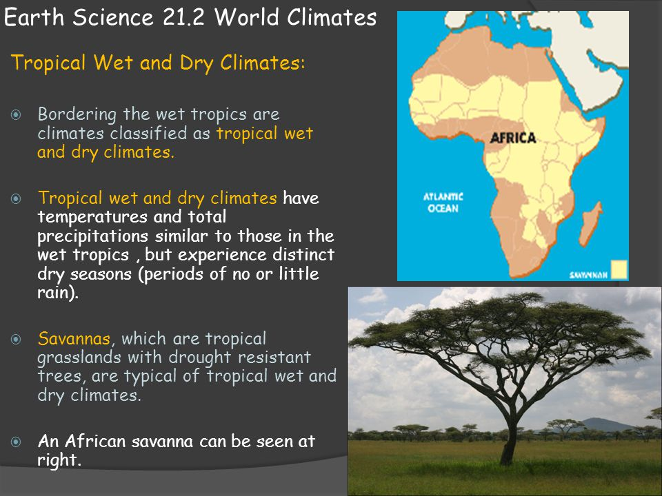 Earth Science 21.2 World Climates Humid Mid-latitude climates:  Humid mid-latitude climates fall into two groups: Climates with mild winters Climates with severe winters  Climates with mild winters have an average temperature in the coldest month that is below 18 degrees Celsius but above -3 C.