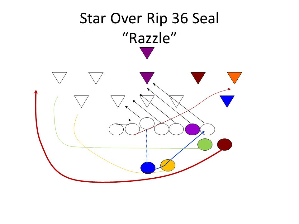 Star Over Rip 36 Seal Razzle