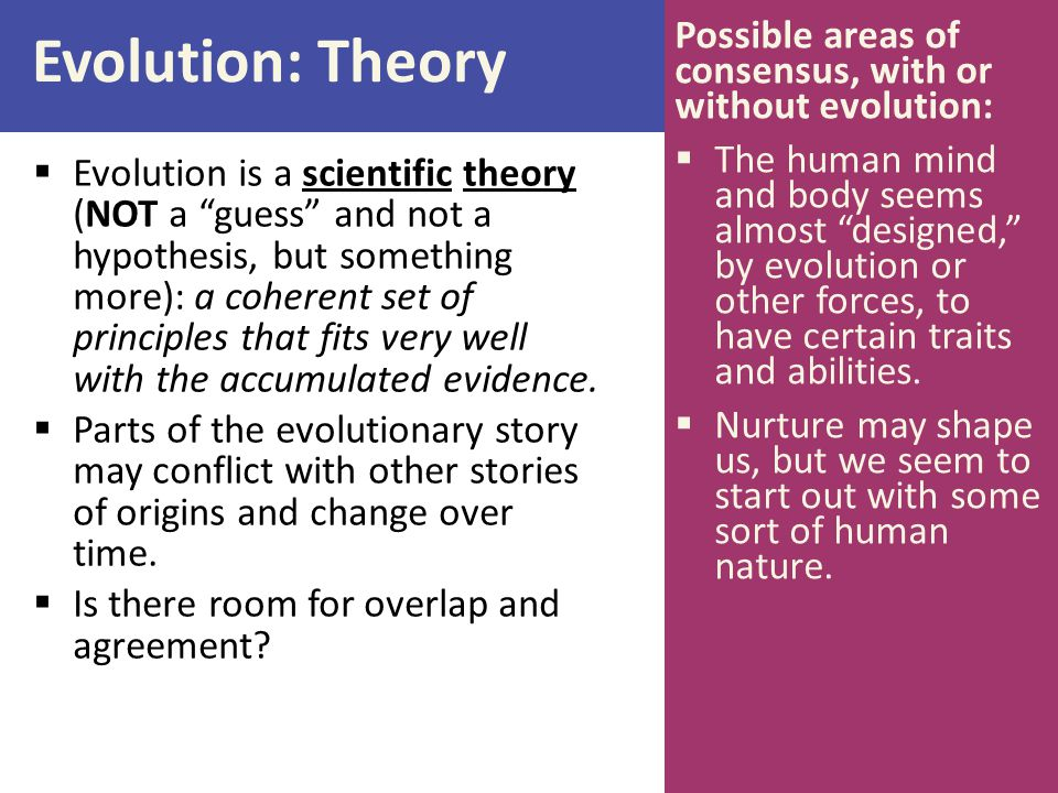 Evolution: Theory  Evolution is a scientific theory (NOT a guess and not a hypothesis, but something more): a coherent set of principles that fits very well with the accumulated evidence.