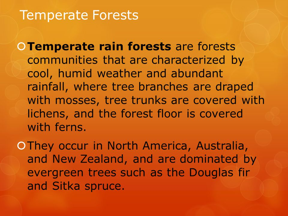 Temperate Forests  Temperate rain forests are forests communities that are characterized by cool, humid weather and abundant rainfall, where tree branches are draped with mosses, tree trunks are covered with lichens, and the forest floor is covered with ferns.