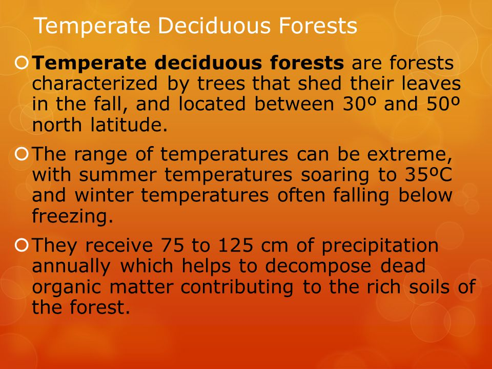 Temperate Deciduous Forests  Temperate deciduous forests are forests characterized by trees that shed their leaves in the fall, and located between 30º and 50º north latitude.