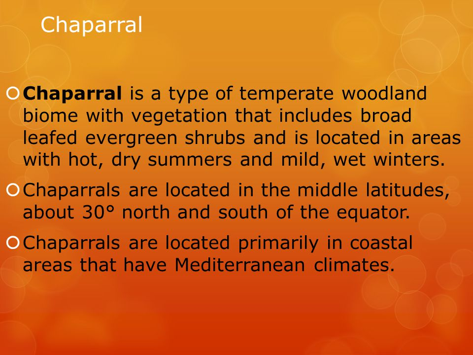 Chaparral  Chaparral is a type of temperate woodland biome with vegetation that includes broad leafed evergreen shrubs and is located in areas with h