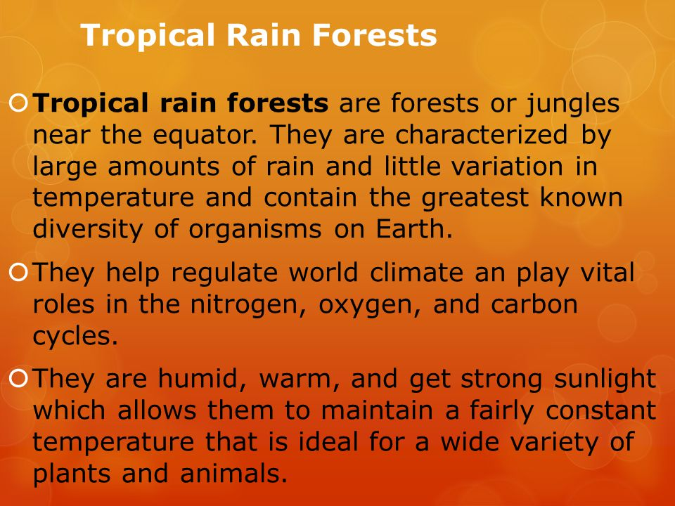 Tropical Rain Forests  Tropical rain forests are forests or jungles near the equator.