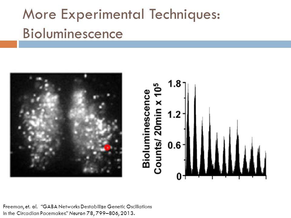 More Experimental Techniques: Bioluminescence Freeman, et.