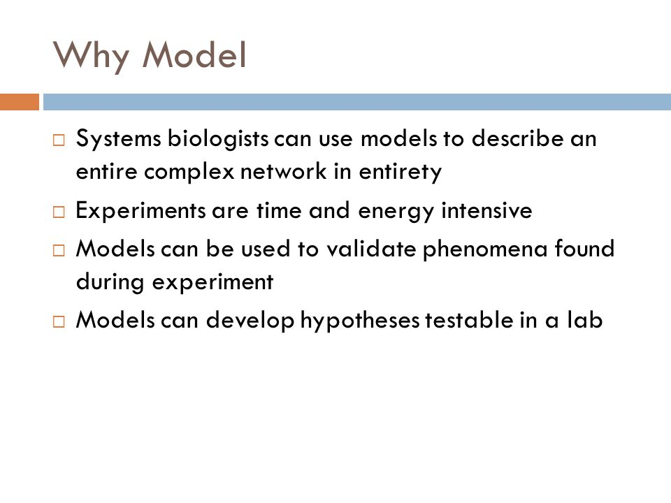 Why Model  Systems biologists can use models to describe an entire complex network in entirety  Experiments are time and energy intensive  Models can be used to validate phenomena found during experiment  Models can develop hypotheses testable in a lab