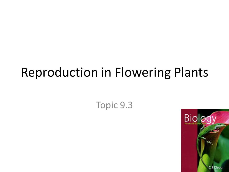 Reproduction in Flowering Plants Topic 9.3