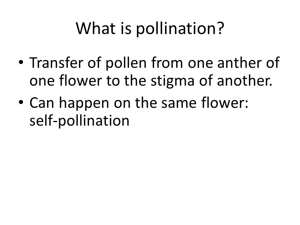 What is pollination. Transfer of pollen from one anther of one flower to the stigma of another.
