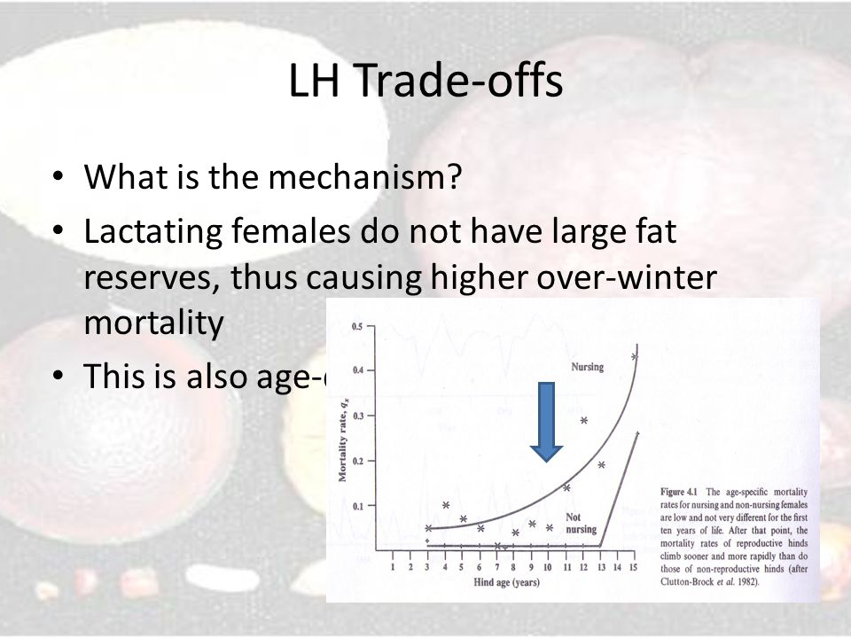 LH Trade-offs What is the mechanism.