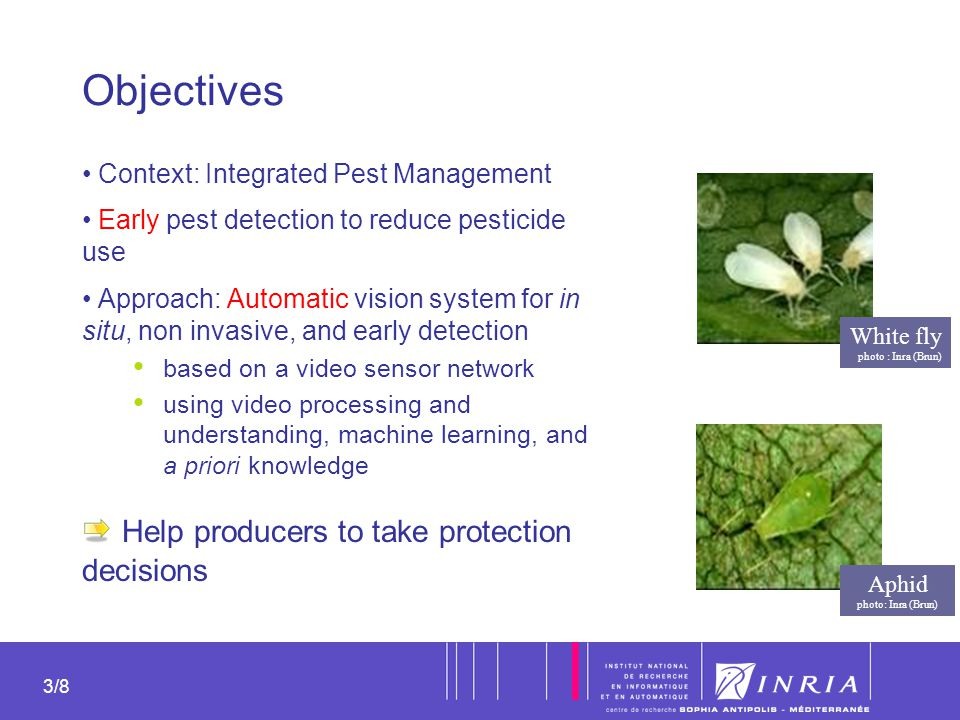 3 3/8 Objectives Context: Integrated Pest Management Early pest detection to reduce pesticide use Approach: Automatic vision system for in situ, non i