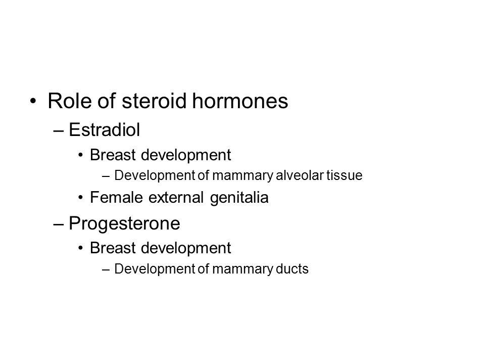 Role of steroid hormones –Estradiol Breast development –Development of mammary alveolar tissue Female external genitalia –Progesterone Breast developm