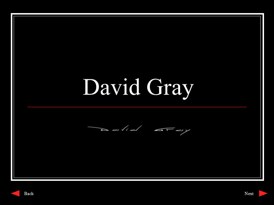 David Gray NextBack