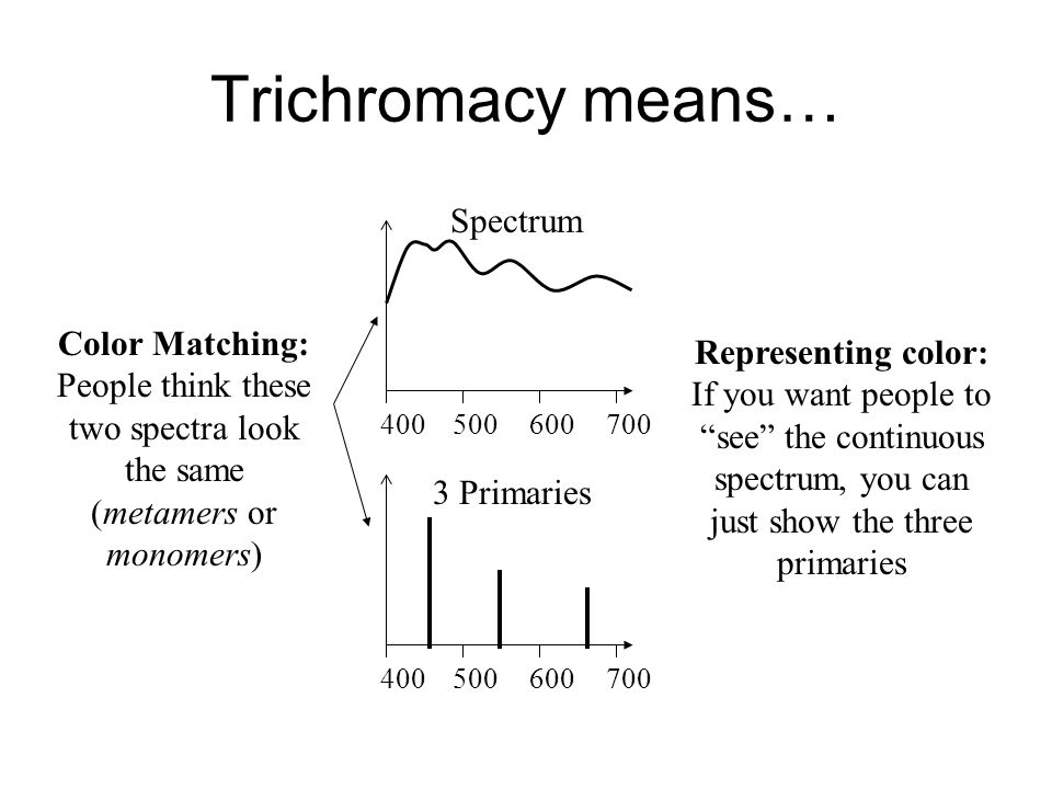 Trichromacy means… 400500600700 400500600700 Spectrum 3 Primaries Color Matching: People think these two spectra look the same (metamers or monomers) Representing color: If you want people to see the continuous spectrum, you can just show the three primaries