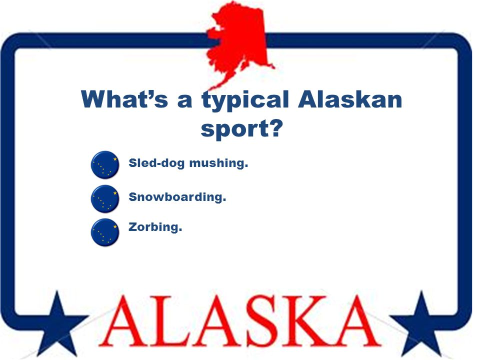 What's a typical Alaskan sport? Sled-dog mushing. Zorbing. Snowboarding.