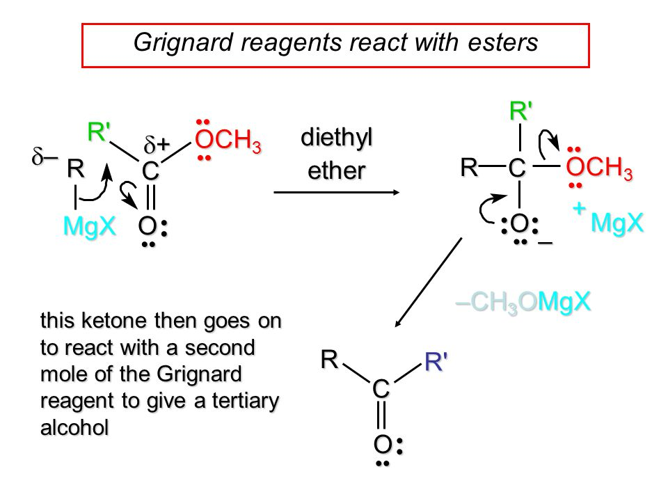 Grignard reagents react with estersRMgX C O – MgX + –––– ++++ R C O diethyl ether OCH 3 R' R' –CH 3 OMgX C ORR' this ketone then goes on to re
