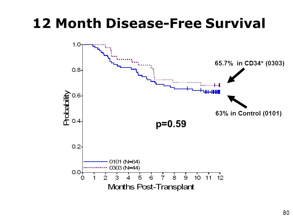 80 12 Month Disease-Free Survival 65.7% in CD34 + (0303) 63% in Control (0101) p=0.59