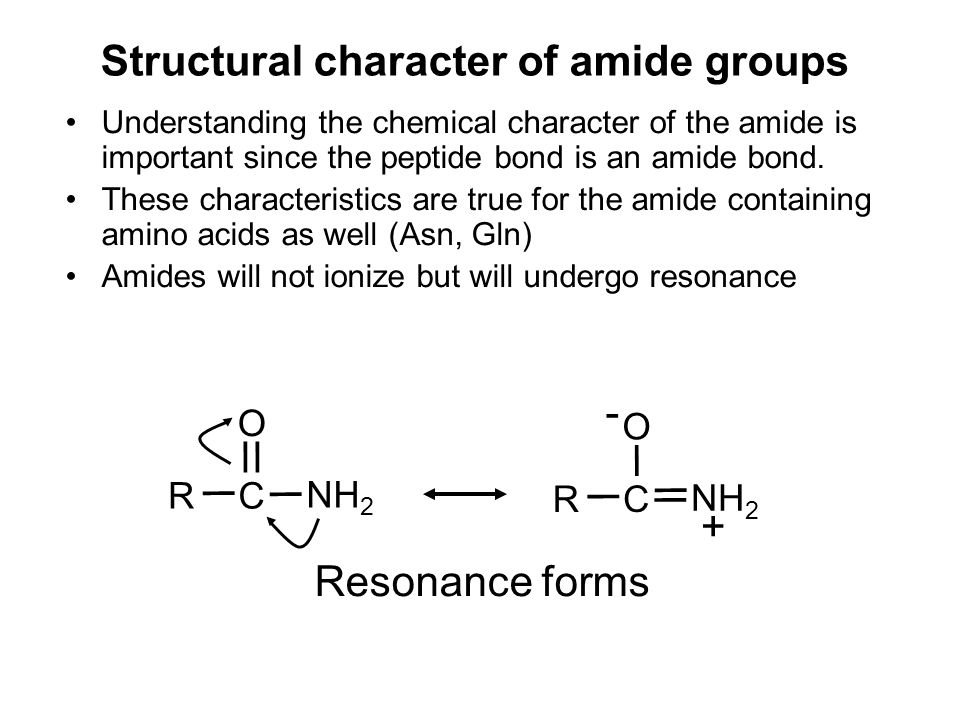 Structural character of amide groups Understanding the chemical character of the amide is important since the peptide bond is an amide bond. These cha