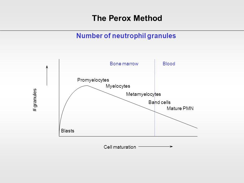 # granules Cell maturation Blasts Promyelocytes Myelocytes Metamyelocytes Band cells Mature PMN Bone marrowBlood Number of neutrophil granules The Per