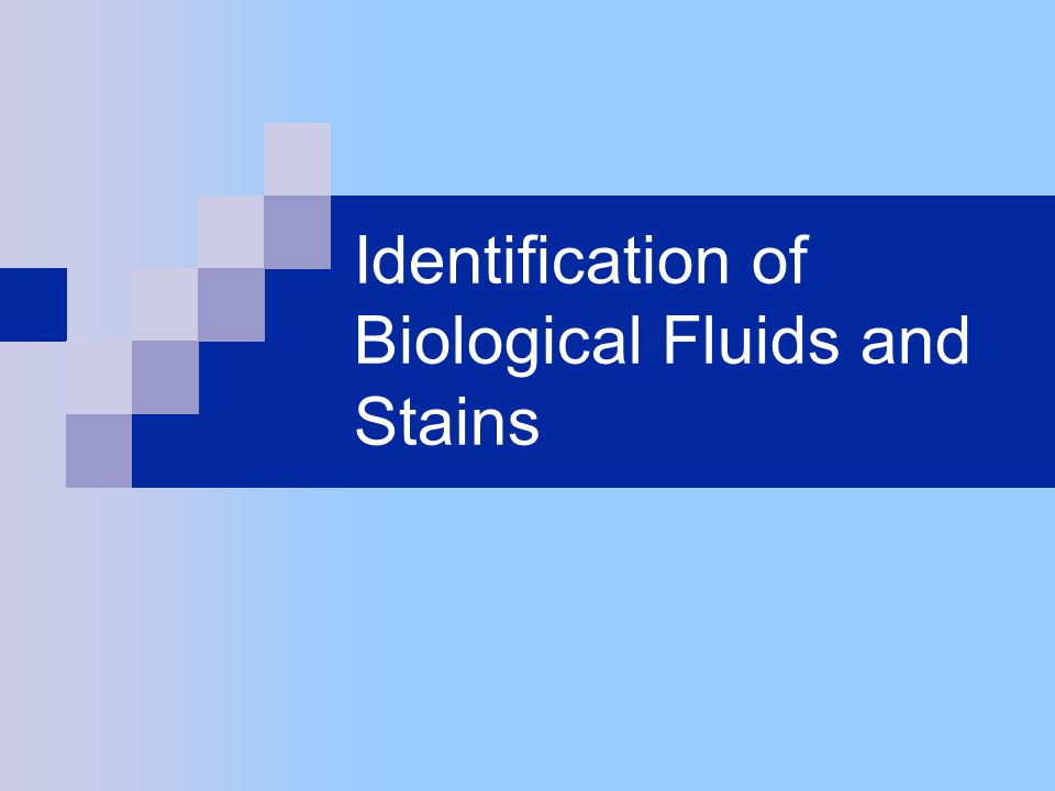 Identification of Saliva Phadebas Reagent (Press Test) Paper is left on area and watched for blue color change Can be watched for up to 40 minutes for color change