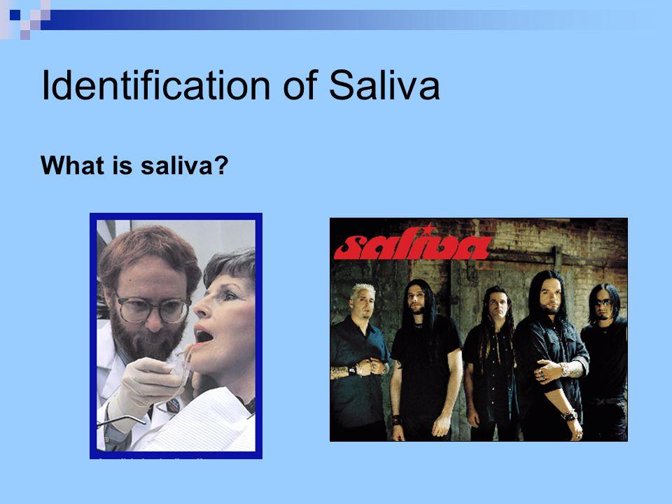 Identification of Saliva What is saliva?