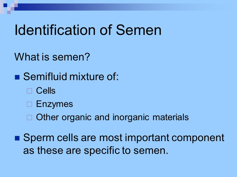 Identification of Semen What is semen.
