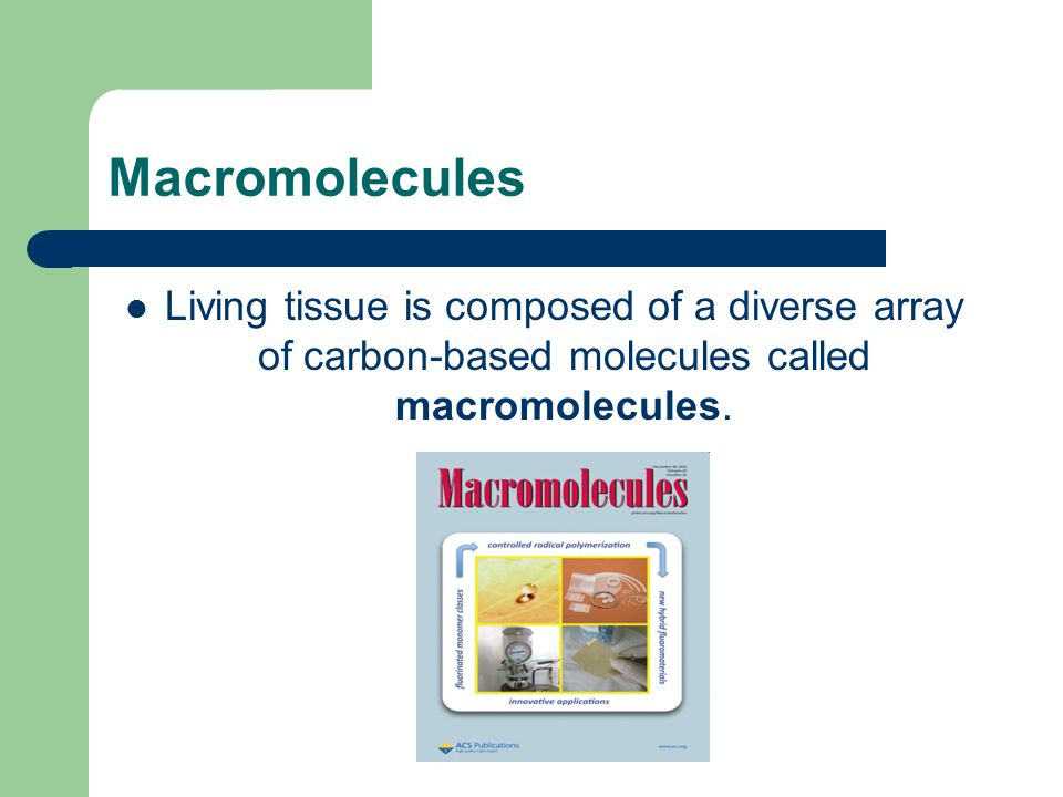Macromolecules Living tissue is composed of a diverse array of carbon-based molecules called macromolecules.