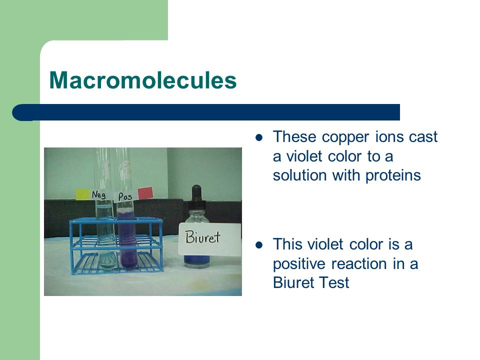 Macromolecules These copper ions cast a violet color to a solution with proteins This violet color is a positive reaction in a Biuret Test