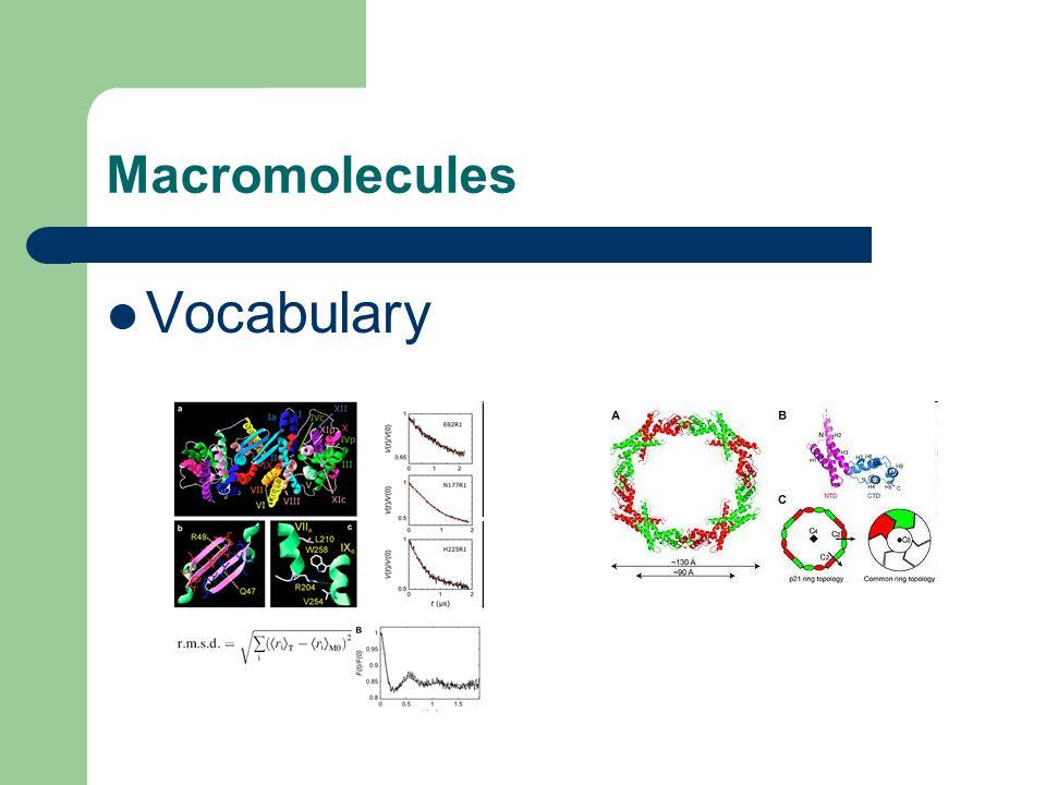 Macromolecules Vocabulary