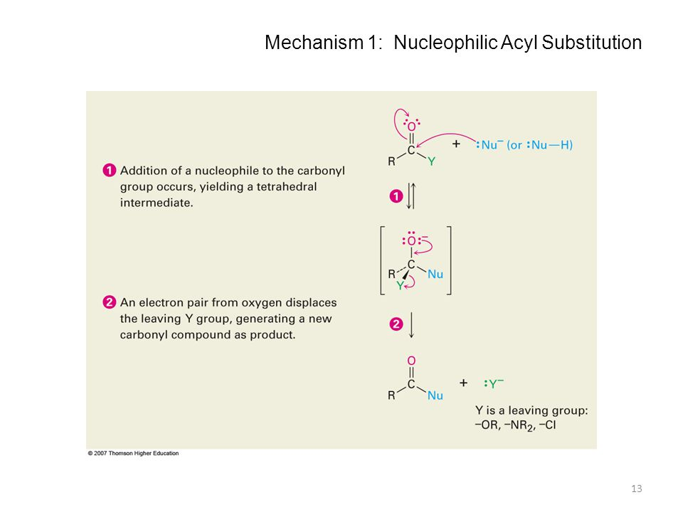 Mechanism 1: Nucleophilic Acyl Substitution 13