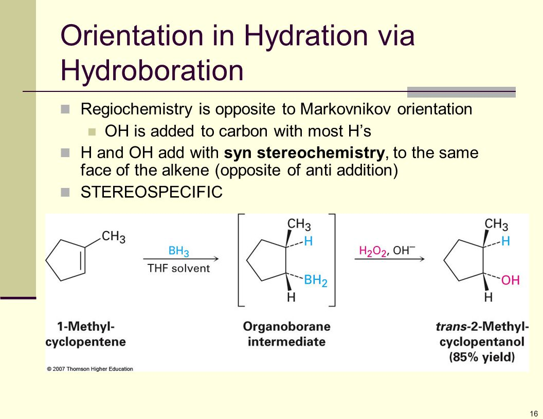 16 Orientation in Hydration via Hydroboration Regiochemistry is opposite to Markovnikov orientation OH is added to carbon with most H's H and OH add w