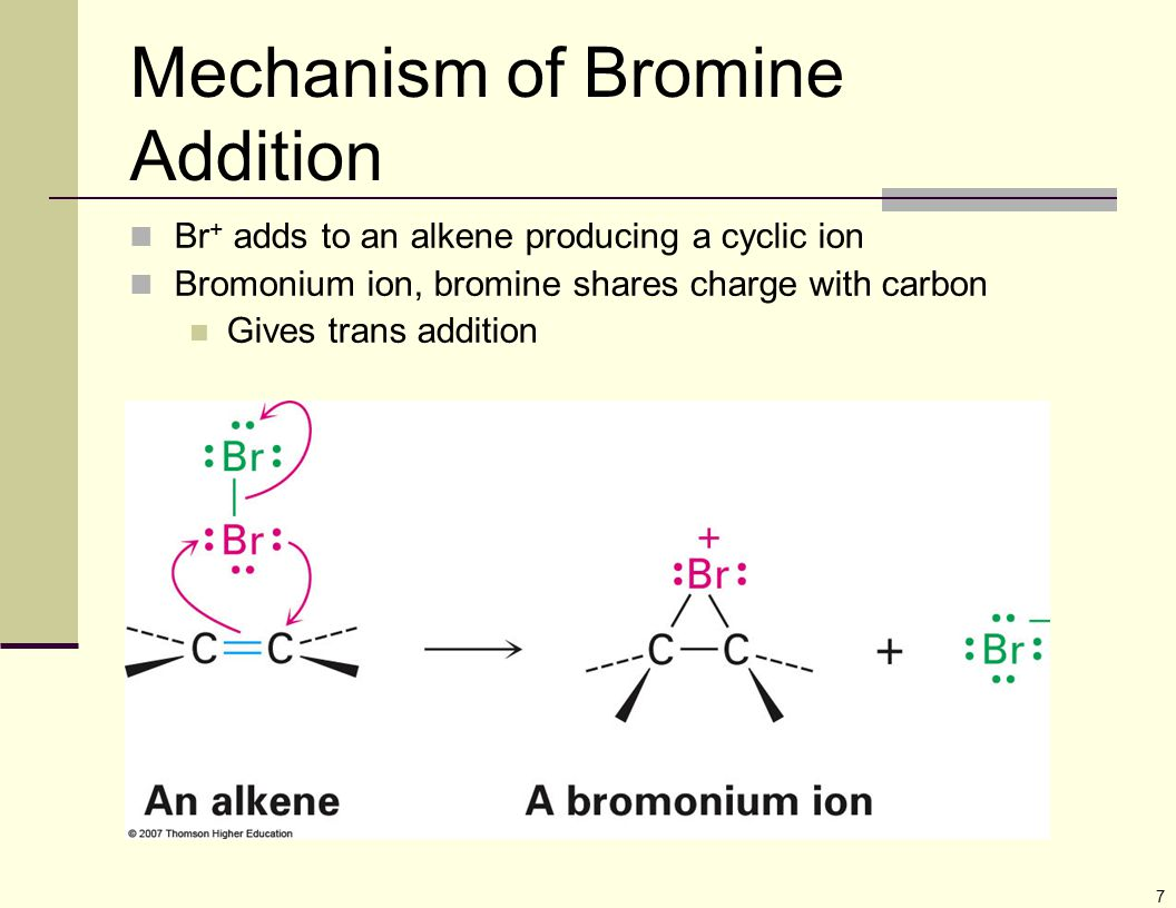 7 Mechanism of Bromine Addition Br + adds to an alkene producing a cyclic ion Bromonium ion, bromine shares charge with carbon Gives trans addition