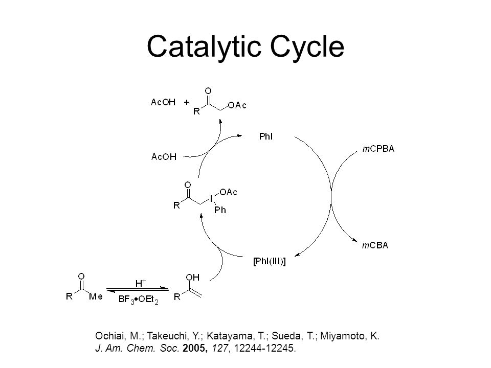 Catalytic Cycle Ochiai, M.; Takeuchi, Y.; Katayama, T.; Sueda, T.; Miyamoto, K.