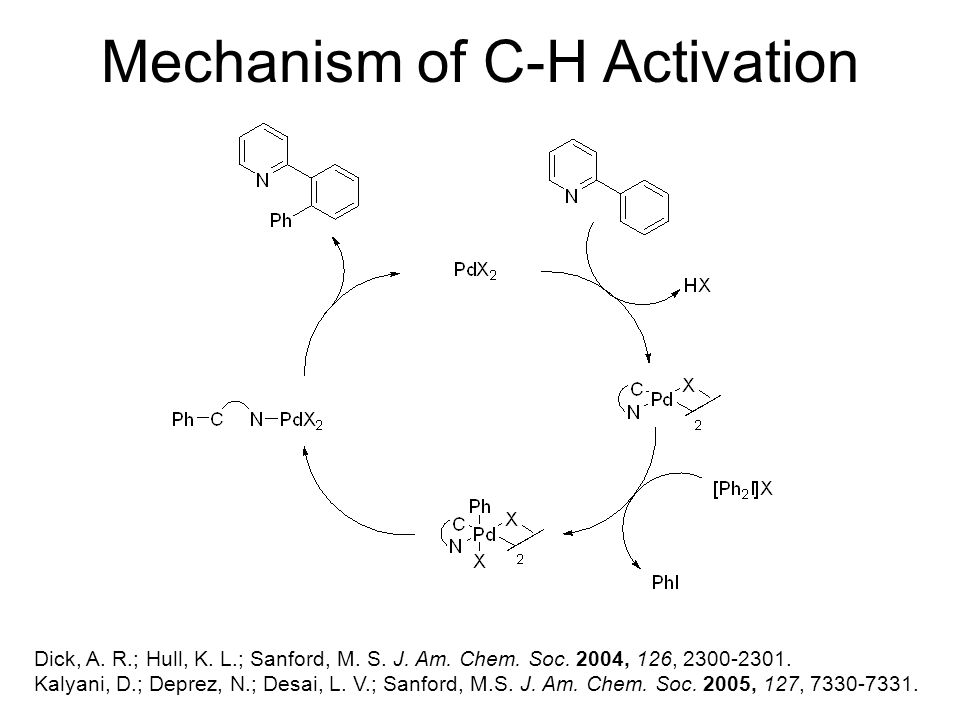 Mechanism of C-H Activation Dick, A. R.; Hull, K.