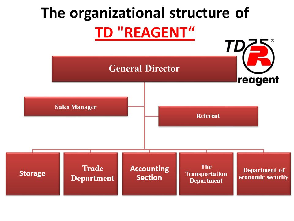 The organizational structure of TD REAGENT General Director Storage Accounting Section The Transportation Department Department of economic security Sales Manager Referent Trade Department