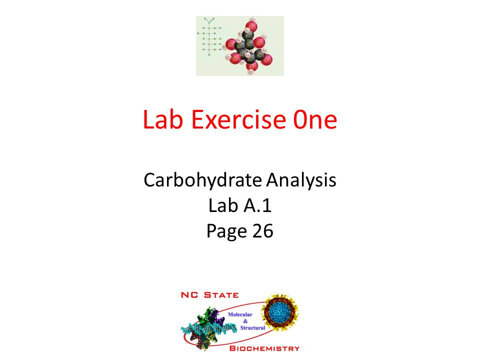 Lab Exercise 0ne Carbohydrate Analysis Lab A.1 Page 26