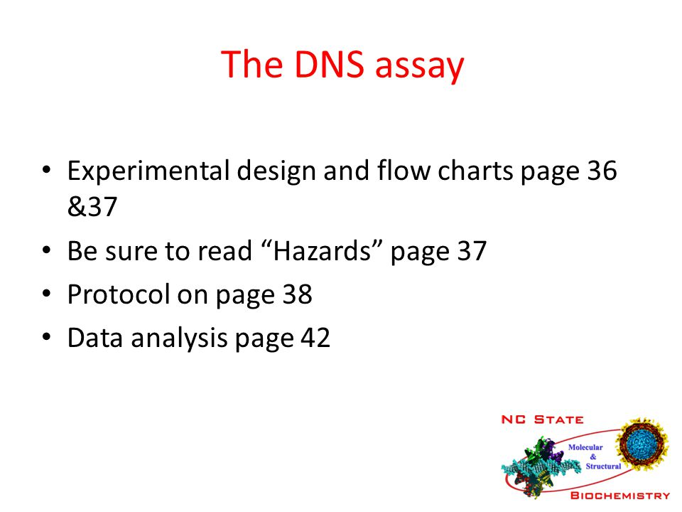 "The DNS assay Experimental design and flow charts page 36 &37 Be sure to read ""Hazards"" page 37 Protocol on page 38 Data analysis page 42"