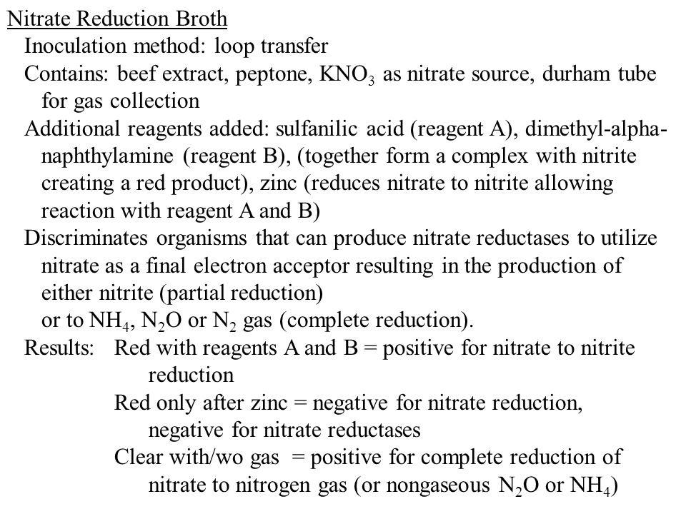 Nitrate Reduction Broth Inoculation method: loop transfer Contains: beef extract, peptone, KNO 3 as nitrate source, durham tube for gas collection Add