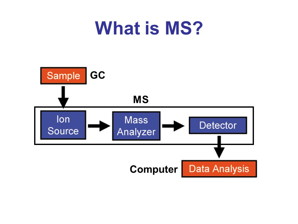 What is MS? GC Computer MS