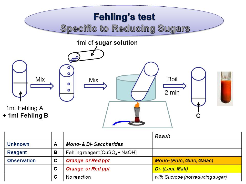 1ml of sugar solution 1ml Fehling A + 1ml Fehling B Mix C Boil 2 min Result UnknownAMono- & Di- Saccharides ReagentBFehling reagent [CuSO 4 + NaOH] ObservationCOrange or Red pptMono- (Fruc, Gluc, Galac) COrange or Red pptDi- (Lact, Malt) CNo reactionwith Sucrose (not reducing sugar)