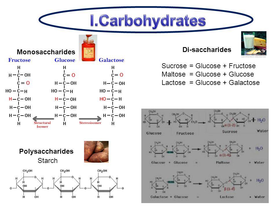 Monosaccharides Di-saccharides Polysaccharides Starch Sucrose= Glucose + Fructose Maltose= Glucose + Glucose Lactose= Glucose + Galactose