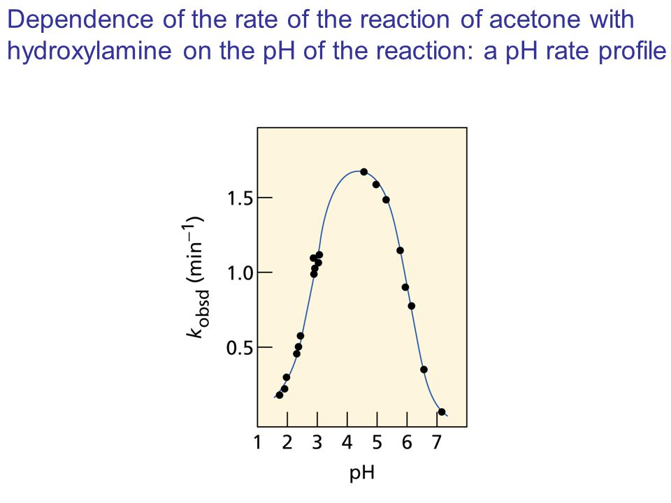 Dependence of the rate of the reaction of acetone with hydroxylamine on the pH of the reaction: a pH rate profile