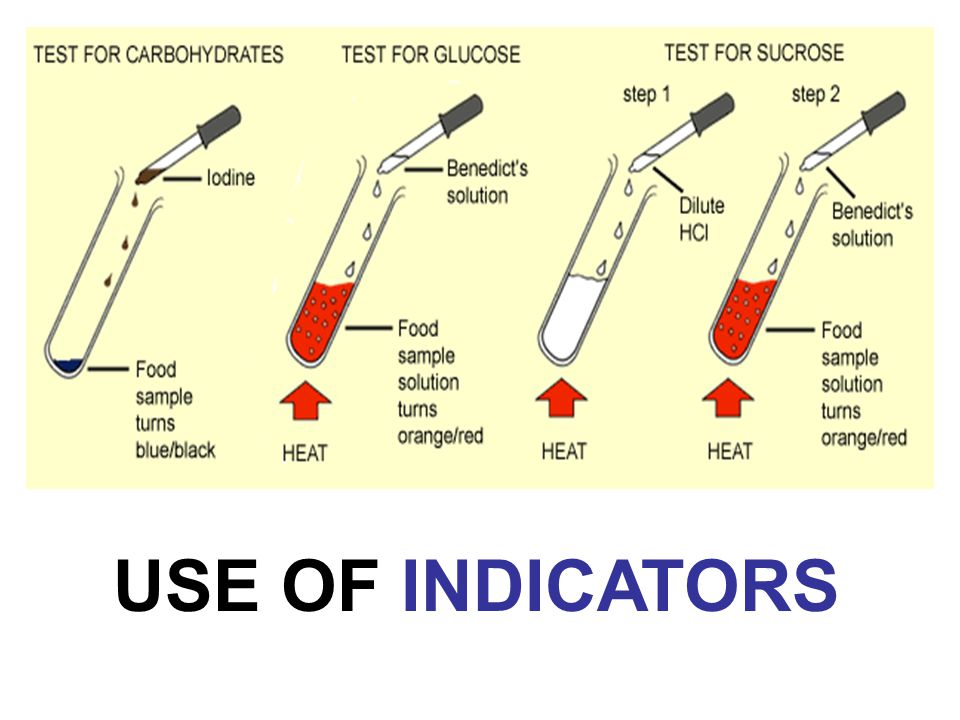 Indicators are substances that detect the presence, absence or concentration of certain chemicals (food substances).