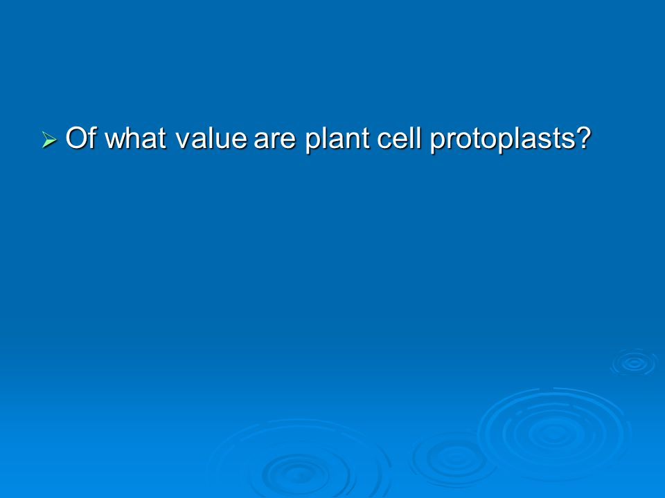  Of what value are plant cell protoplasts?