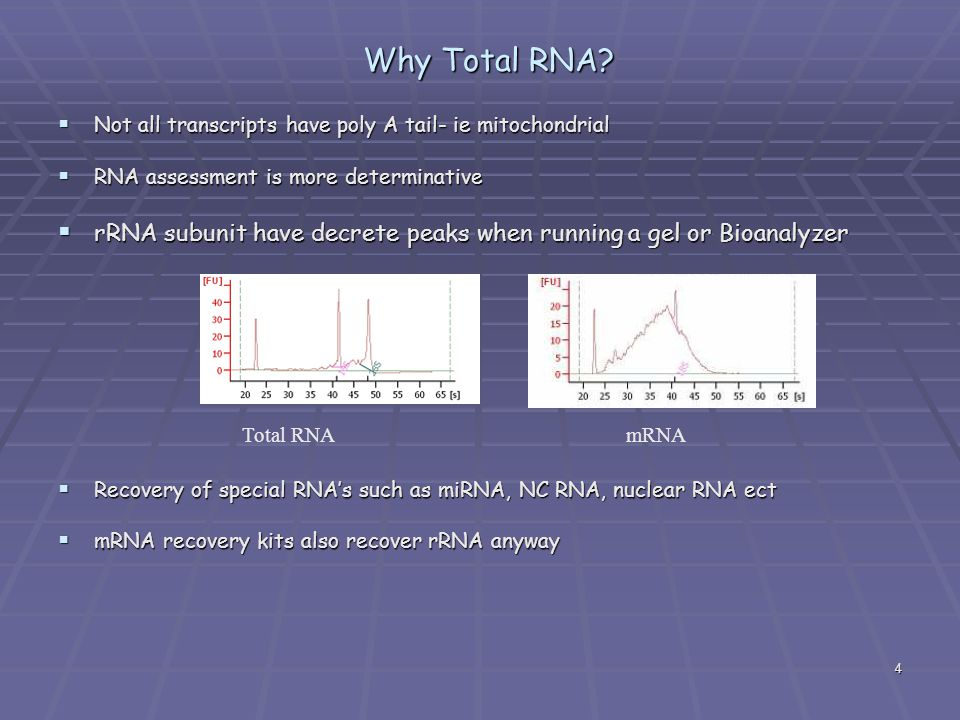 4 Why Total RNA?  Not all transcripts have poly A tail- ie mitochondrial  RNA assessment is more determinative  rRNA subunit have decrete peaks whe