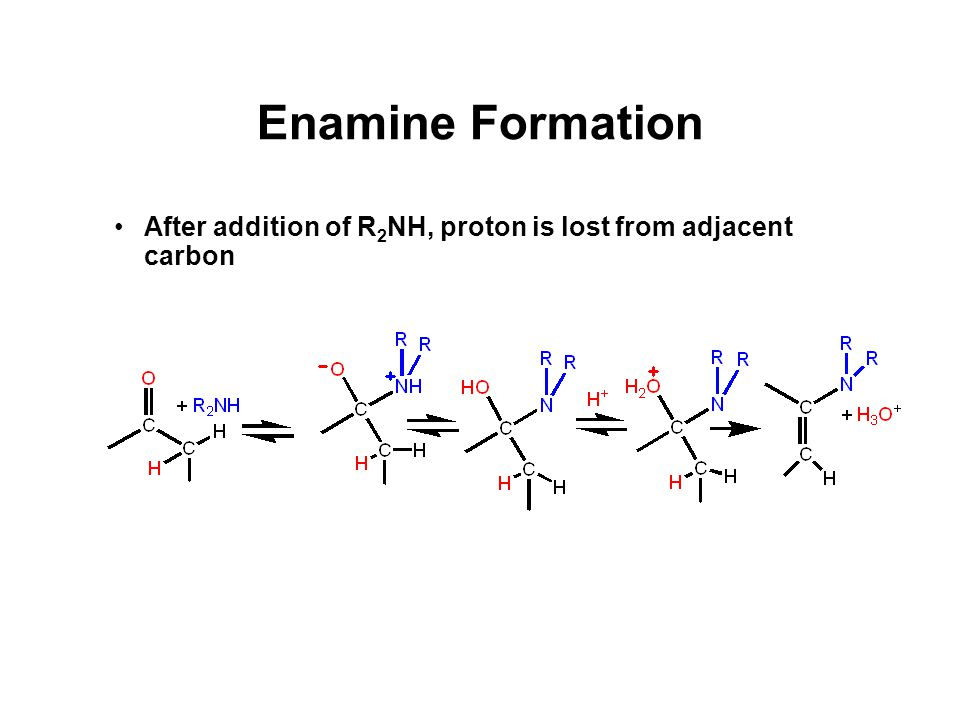 Enamine Formation After addition of R 2 NH, proton is lost from adjacent carbon