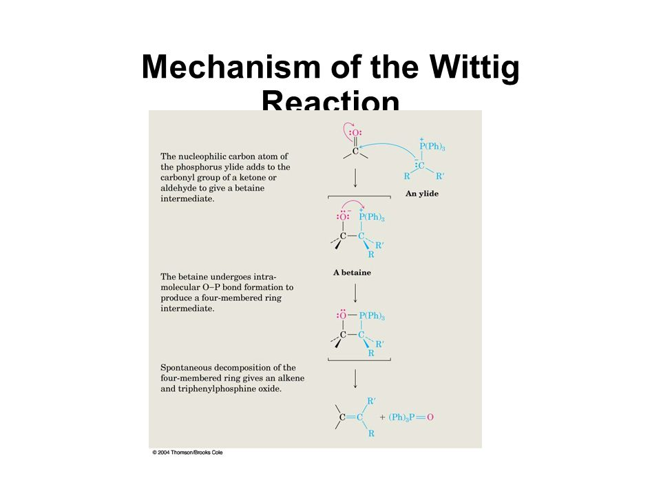 Mechanism of the Wittig Reaction